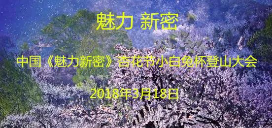 中国《魅力新密》杏花节小