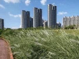 福州乌龙江湿地公园扩容 最新实景图来了