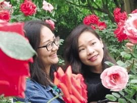 """青秀山""""五一""""花海怒放 20万株珍稀玫瑰等你来赏"""