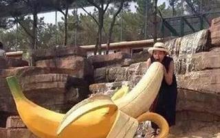 世界最大的香蕉啥样