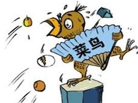 """单位""""新人""""措辞不当引争议 职场菜鸟需学习"""