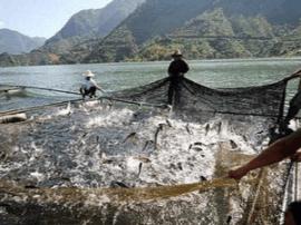 运城市水务局对渔业安全生产进行督查