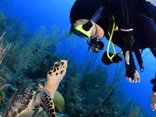 零基础想潜水怎么办 教你get低门槛潜水技能