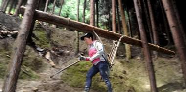 身怀绝技! 深山女背夫日背千斤木料如履平地