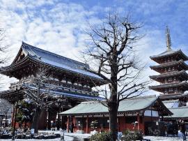 日本掀起江苏旅游热 中日旅游江苏交流月开幕