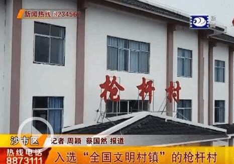"""我为荆州当导游:枪杆村入选""""全国文明村镇""""评选"""