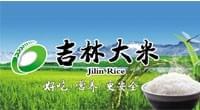 吉林大米春季文化节