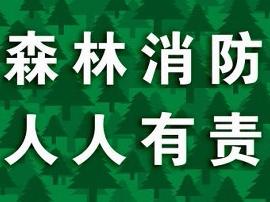 灵宝市豫灵镇: 筑牢森林防火网