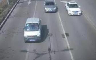 近期交通违法行为曝光!有您的爱车么?
