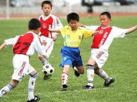 河北省第二届青少年足球赛落幕