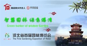 河北省首届园林博览会美景惊艳衡水湖畔