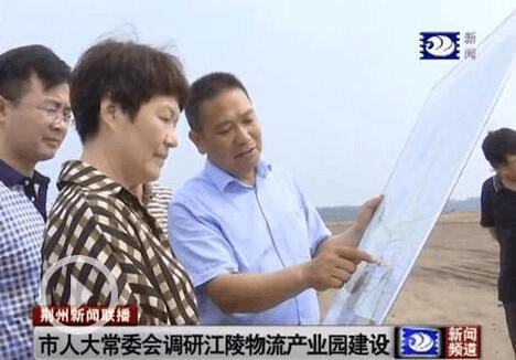 市人大常委会调研江陵县物流产业园建设情况