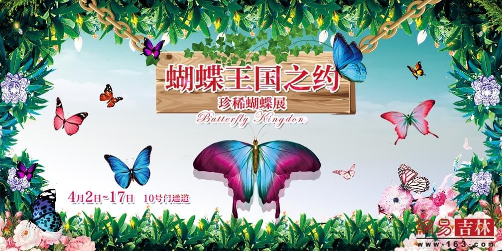 珍稀蝴蝶展首次亮相春城 快来赴蝴蝶王国之约