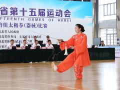 省运会太极拳赛 石家庄代表队称霸