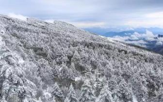 50张图告诉你 云南冬天有多美!