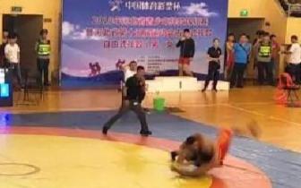 省运会古典式摔跤预赛 石家庄邯郸成绩优
