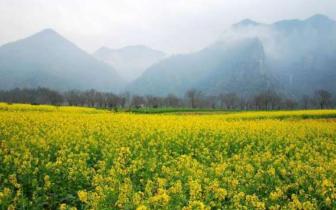 浙南这座古城 坐拥中国史上最早走红的山水诗画廊