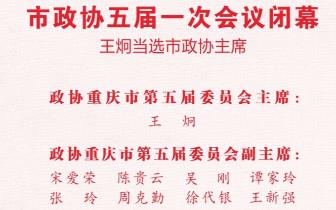 市政协五届一次会议闭幕 王炯当选市政协主席