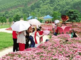 南宁发布2.5天精品旅游线路 开启2.5天休假模式