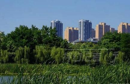 荆襄内河公园追踪报道:专人清扫 环境又变靓了