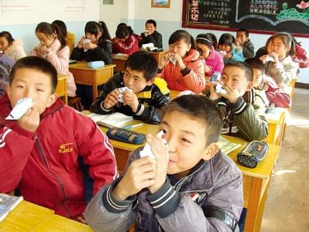 教育部:学生营养膳食补助金不得发放现金