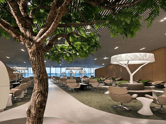 盘点全球超美的机场休息室 等待也如此美好
