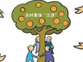 黄州查出8000万村级虚假债务
