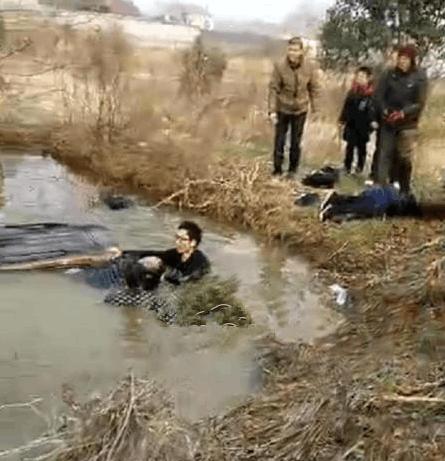 """别瞎传了!监利""""汽车掉到水塘""""里是谣言!"""