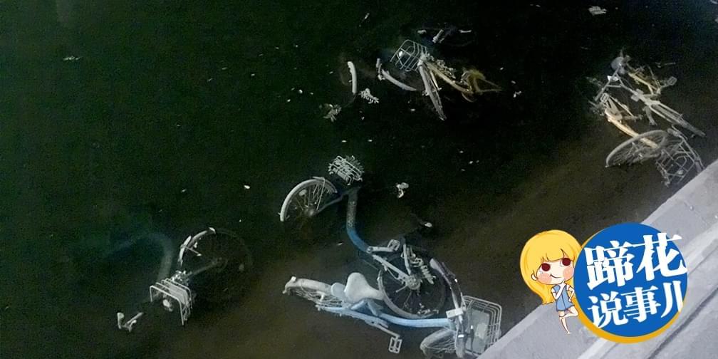 国民照妖镜又显灵!护城河内捞出30多辆共享单车