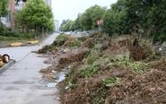 泰州一小区物业堆积秸秆 影响居民出行
