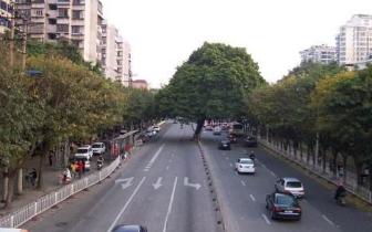 开学首日榕城区车多路不堵 元宵后交通压力将增大
