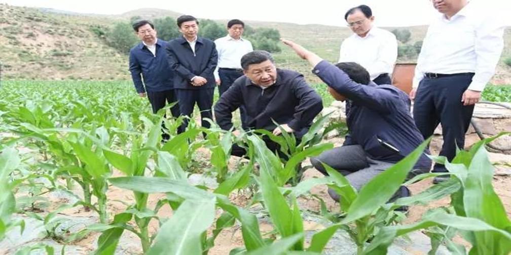 习近平:请乡亲们同党中央一起  撸起袖子加油干