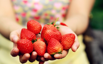 """和营养师学吃""""冬草莓"""""""
