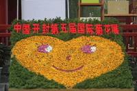 开封菊花文化节开幕