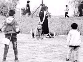 福建严格限制宠物与机动车进入公园和广场