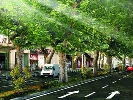 3月16日起张博路潘南路等重点道路将改造升级