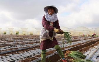 山西:2018年将实现61万贫困人口脱贫