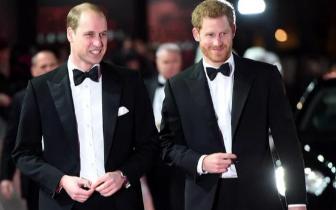 哈里王子伴郎出炉:哥哥威廉王子担此重任