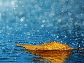 运城市气象局:本周雨水天气较多