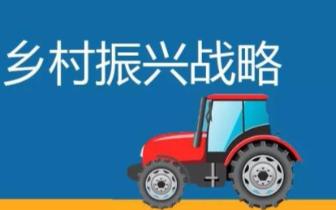 """吴宏耀:实施乡村振兴战略要防止""""刮风""""搞运动"""