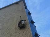 海尔服务兵11米高空吊2小时完成空调安装