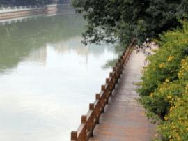 晋安河公园打造最美旅游观光带 将再现柳岸榕荫