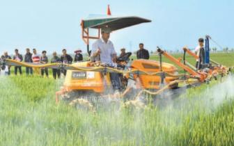 """安徽将实施农业发展""""十大工程"""""""