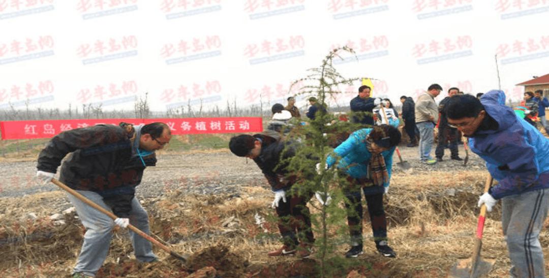 高新区组织义务植树活动 四年种植绿化苗木500余亩