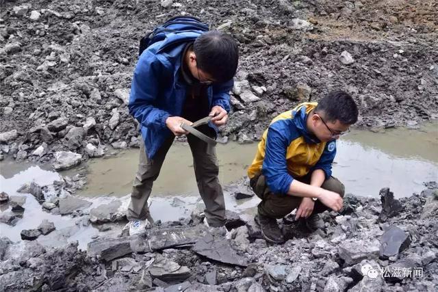 """中科院又来荆州这个""""聚宝盆""""了 要发掘古生物化石!"""