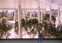 库克:新苹果总部访客中心将对外开放