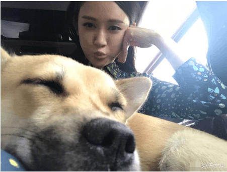 陈乔恩与狗狗自拍合影 嘟嘴做鬼脸机灵可爱
