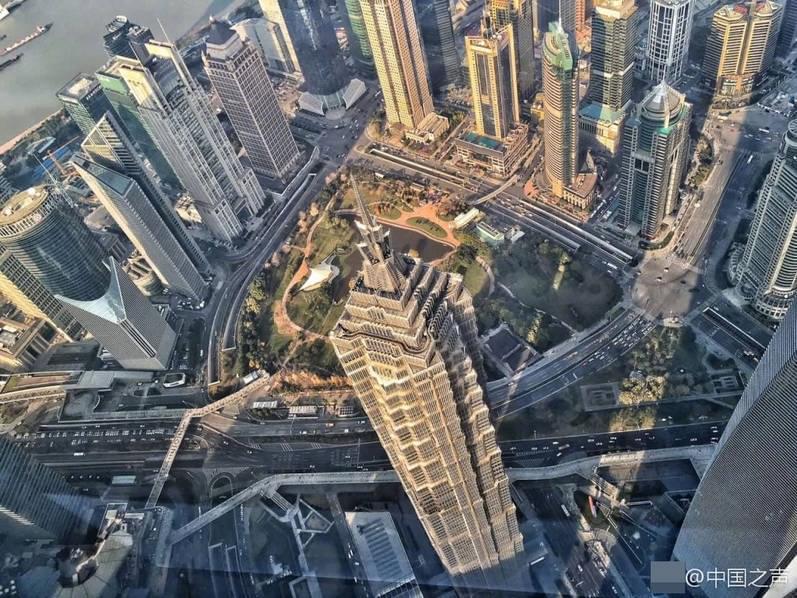 真的很高!中国第一高楼向公众开放