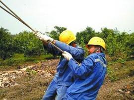 江门蓬江 供电局 万家灯火缘于他们一直在负重前行!
