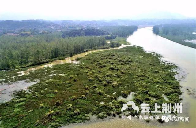 """松滋洈水国家湿地公园通过省级初检 5月将迎""""国检"""""""
